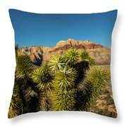 Young Joshua Throw Pillow