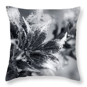 Young Leaves In Black And White Throw Pillow