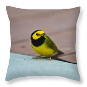Young Male Hooded Warbler 2 Throw Pillow