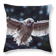 Young Owl Throw Pillow