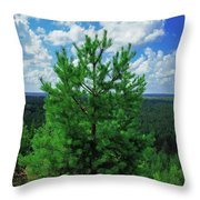 Young Pine Throw Pillow