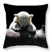Young Polar Bear On A Log Throw Pillow