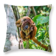 Young Red Howler Monkey Throw Pillow