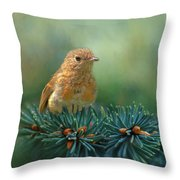 Young Robin On Pine Tree Throw Pillow