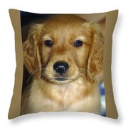 Young Sam Throw Pillow by Stephen Anderson