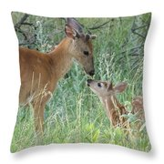 Young White-tailed Deer Say Hello Throw Pillow