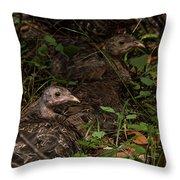 Young Wild Turkeys Throw Pillow