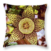 Your A Star In My Eyes Throw Pillow