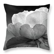 Your Are Beautiful Throw Pillow