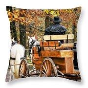 Your Carriage Awaits Throw Pillow