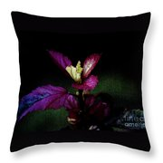 Your Coat Of Many Colors Throw Pillow