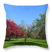 Your Life Is Waiting Throw Pillow