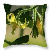 Your Next Tomatoes Throw Pillow
