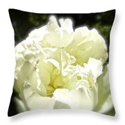 Your World For A Moment Throw Pillow