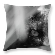 You're Being Watched... Throw Pillow