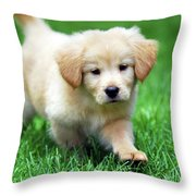 You're Only Young Once Throw Pillow