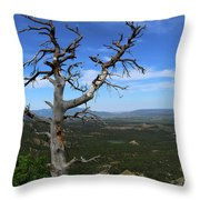 You're Still On My Mind  Throw Pillow