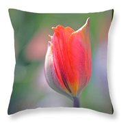 Youthful Exuberance Throw Pillow