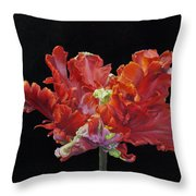 Youtube Video - Red Parrot Tulip Throw Pillow