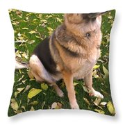 Youve Got My Full Attention Throw Pillow