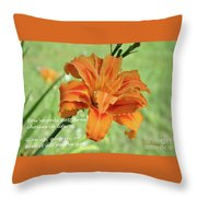 You've Only Got Three Choices Throw Pillow