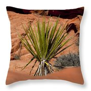 Yucca Beauty Throw Pillow