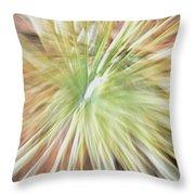 Yucca Burst Throw Pillow