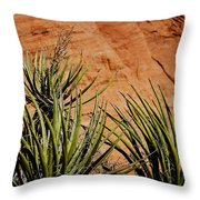 Yucca Family Throw Pillow