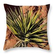 Yucca Five Throw Pillow