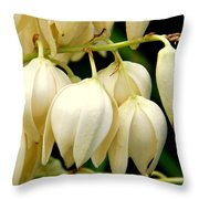 Yucca Flower Throw Pillow