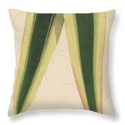 Yucca Leaf Throw Pillow