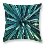 Yucca Plant Detail Throw Pillow