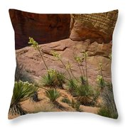 Yucca Plants Valley Of Fire Throw Pillow