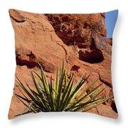 Yucca Three Throw Pillow