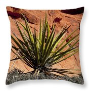 Yucca Two Throw Pillow