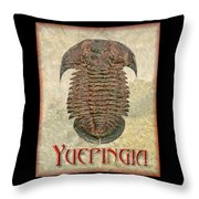 Yuepingia Fossil Trilobite Throw Pillow
