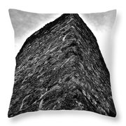 Yulee Sugar Mill Ruins Throw Pillow