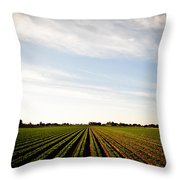Yuma Fields  Throw Pillow