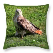 Yup Here I Am Take A Good Look Throw Pillow