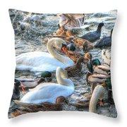 Yury Bashkin Ducks Stockholm  Throw Pillow
