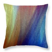 Z1342b Throw Pillow