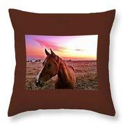 Zack During Sunset Throw Pillow