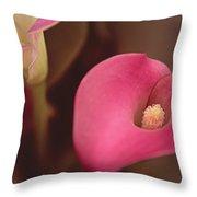 Zantedeschia Pink Puppy  Throw Pillow