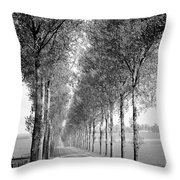 Zb4992_190423_0304 Throw Pillow