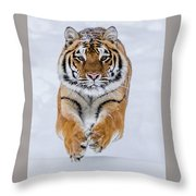 Zeal Throw Pillow