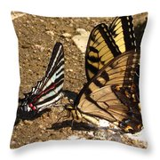 Zebra And Tigers Throw Pillow