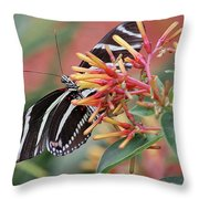 Zebra Butterfly With Blue Eyes Throw Pillow