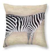 Zebra, C1620 Throw Pillow