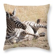 Zebra Foal Rolls In Dust On Savannah Throw Pillow