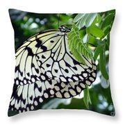 Zebra In Disguise Throw Pillow